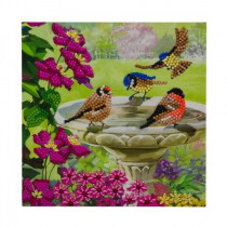 Crystal Art Card Birds
