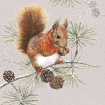 Serviette Squirrel In Winter
