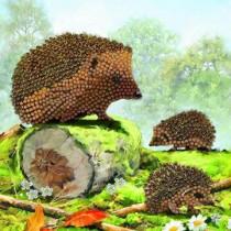 Crystal Art Card Happy Hedgehogs