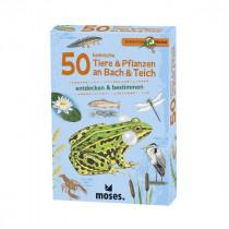 50 Tiere & Pflanzen an Bach & Teich
