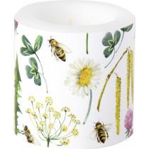 Windlicht Bee Grateful