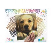 Pixelset 4er-Platte Hund