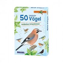 50 einheimische Vögel